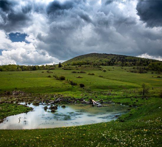 Krajobraz_23